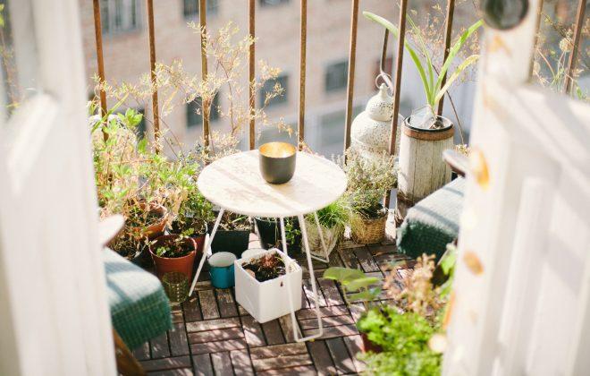 Ta med trädgården vid flytten