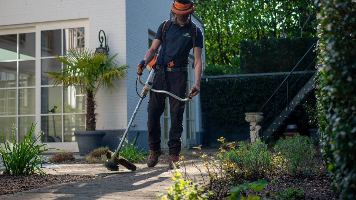 En trädgårdsarbetare ser till att vi kan köpa krukväxter, snittblommor, grönsaker och frukt ute i butikerna. Trädgårdsarbetarnas jobb är att ta hand om växter från de att de sås till det att de ska levereras till butikerna. De företag som en trädgårdsarbetare kan jobba hos kan variera från odling av köksväxter, prydnadsväxter, bär, frukt eller plantskoleväxter. Beroende på vilken årstid och växtslag som ska odlas görs det antingen utomhus eller inomhus i ett växthus. Oftast är företagen specialiserade på ett fåtal sorter av växter, som rosor, gurkor, tomater, tulpaner. Alla produkter säljs oftast i stora partier till grossister som sedan säljer dom vidare till butikerna där vi kan handla dem. För att kunna jobba som trädgårdsarbetare kommer du behöva ta grönt kort inom branschen. Det består av ett praktiskt prov och ett teoretiskt prov. Du gör proven under en och samma dag. Klarar du både kommer du få ett diplom som bevis på dina kunskaper inom områdena mjölk, växtodling, gris och yrkesodling trädgård. Även ditt specialområde som du valt att fördjupa dig inom. Är du i ung finns det även utbildningar på gymnasienivå. Ett av de populäraste är naturprogrammet med inriktning trädgård. Det finns även liknande utbildningar hos komvux och andra vidareutbildningar inom yrkeshögskolan. Så är du sugen på att jobba med växter så finns det många möjligheter att utbilda sig för att kunna jobba med växter. Vill du jobba med snittblommor eller liknande i butik finns det även utbildningar för det. Sök bara på det yrket du är intresserad av tillsammans med den ort du bor på eller skulle kunna tänka dig att flytta till så borde du få upp massa alternativ. Som trädgårdsarbetare, oavsett bransch kommer din arbetsgivare antagligen ha krav på körkort. Har du inget körkort idag är det dags att göra slag i saken, bot du i uppland och vill taKörlektioner i stockholmkan vi rekommendera JP's körskola i Stockholm, Sundbyberg.