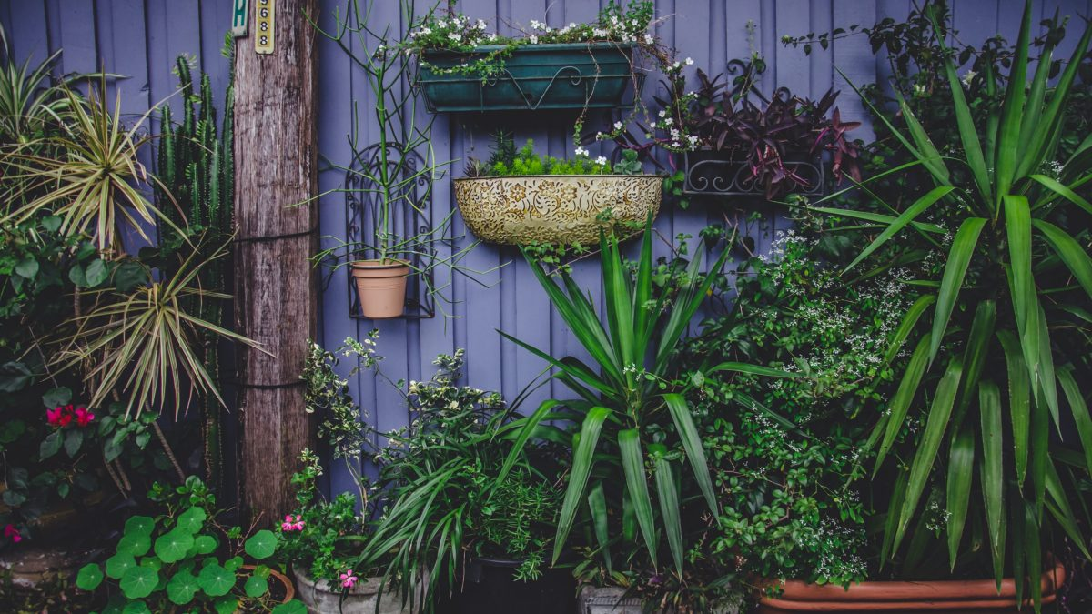 Låna pengar för att investera i din trädgård