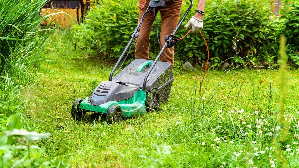 Bästa batteridrivna gräsklippare